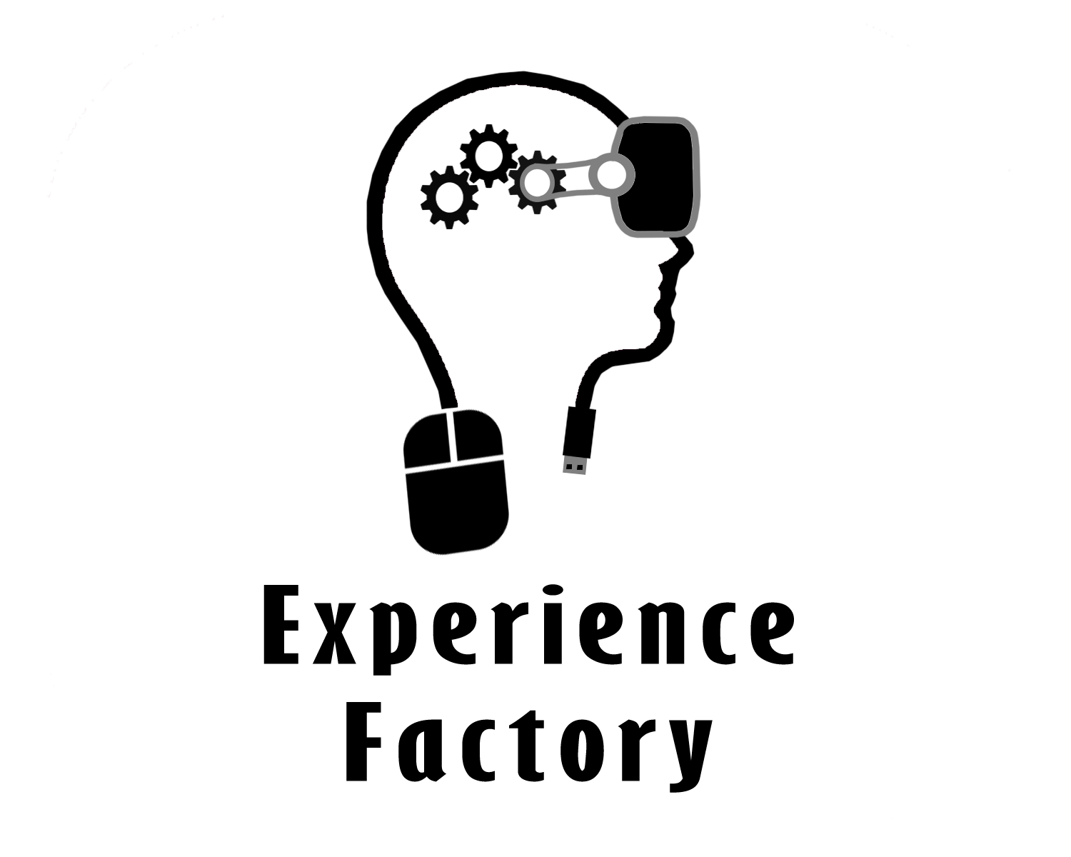 experience factory